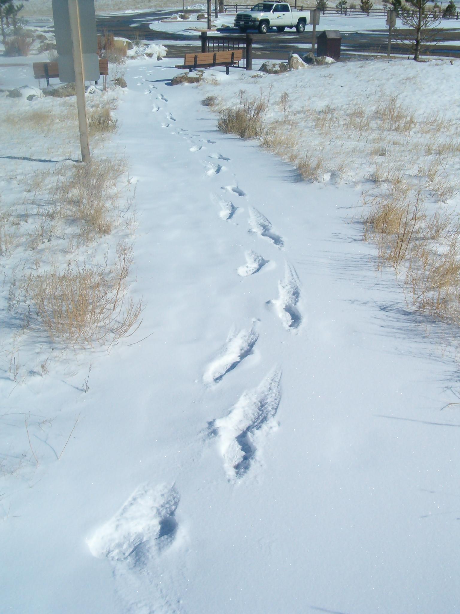 Cheyenne mountain state park bill hensleys random blog one publicscrutiny Choice Image
